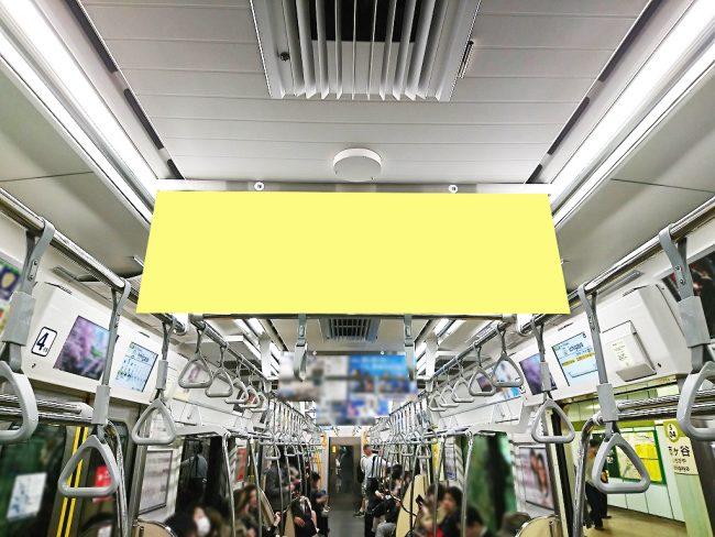 【電車広告】都営 三田線 中づりポスター ワイドサイズ 2日間・3日間